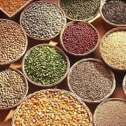 Giá nông sản ngày 13/1: Phần lớn các mặt hàng nông sản quay đầu giảm giá sau một phiên tăng mạnh