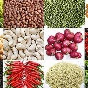 Ngô và đậu tương có thể tiếp tục đà tăng trong khi lúa mỳ điều chỉnh trong tuần