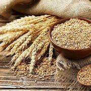 Ukraine: Lũy kế xuất khẩu lúa mỳ kể từ đầu niên vụ hiện đạt 74.3% mức hạn ngạch