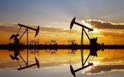 Giá dầu thô cần thêm thông tin để giữ vững đà tăng