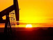 Giá dầu thô WTI có thể sẽ quay đầu tăng trong phiên hôm nay