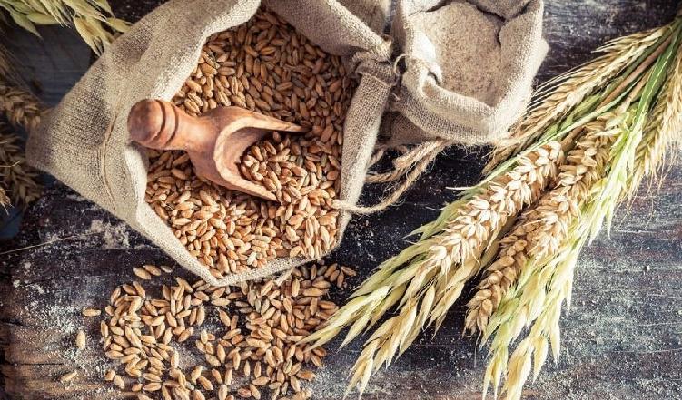 Phần lớn các mặt hàng nông sản đều giảm giá trong phiên 9/4
