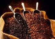 Giá cà phê hôm nay 22/6: Thị trường trong nước tăng nhẹ 100 đồng/kg
