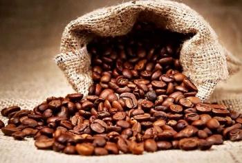 Giá cà phê sẽ tiếp tục giảm trong hôm nay?