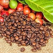 Giá cà phê có thể tiếp tục tăng nhờ lực mua kỹ thuật