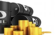 Thế giới có nguy cơ thâm hụt dầu và khí đốt trầm trọng, dự kiến giá dầu thô sẽ đạt đỉnh