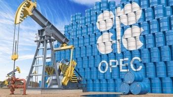 OPEC coi thỏa thuận về sản lượng dầu của UAE là nguy cơ bế tắc