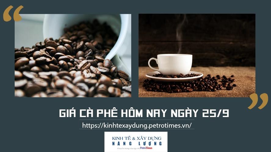 Giá cà phê hôm nay ngày 25/9: Tăng nhẹ tại các địa phương trọng điểm