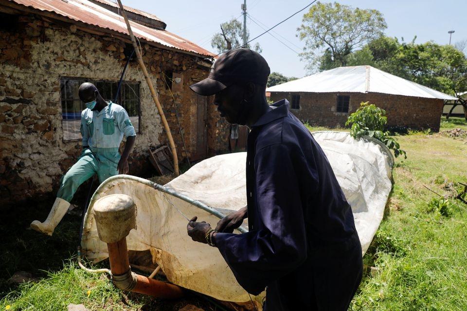 Kenya biến bèo lục bình thành nhiên liệu sinh học để nấu ăn