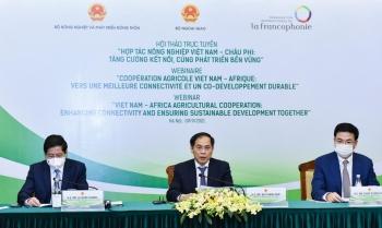 Nâng cao hiệu quả hợp tác nông nghiệp Việt Nam - châu Phi trong tình hình mới