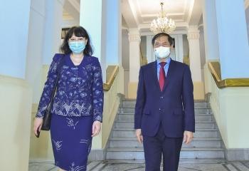 Bộ trưởng Ngoại giao Bùi Thanh Sơn tiếp Đại sứ Rumani