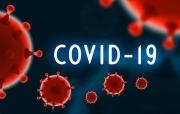 Tin mới nhất về tình hình Covid-19 trên thế giới - ngày 23/9