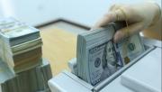 Tỷ giá ngoại tệ hôm nay ngày 6/8: USD tăng nhẹ