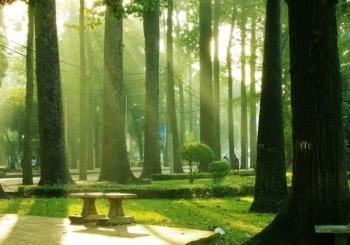 Tin nhanh bất động sản ngày 29/8: TP HCM quy hoạch thêm 23 công viên quy mô 230ha
