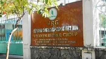 Tin nhanh bất động sản ngày 19/2/2021: Sai phạm về sử dụng đất đai tại Tập đoàn Công nghiệp cao su Việt Nam