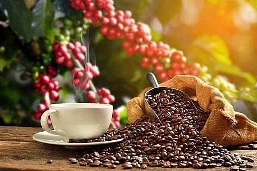 Giá cà phê hôm nay 6/5: Đồng loạt tăng vọt, trong nước cán mốc 34.000 đồng/kg