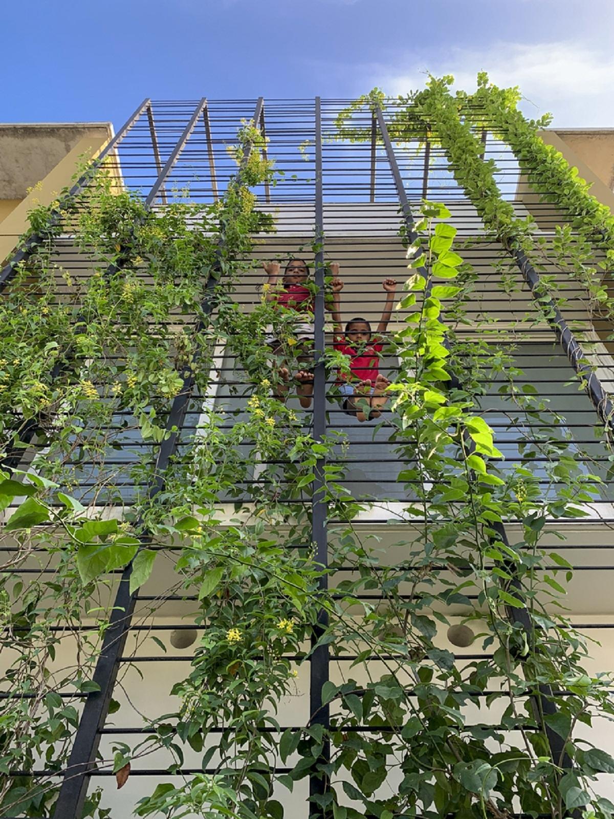 Ngôi nhà tràn ngập cây xanh - Không gian của con người và thiên nhiên