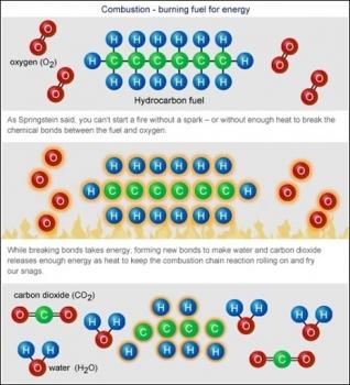Dầu khí được hình thành như thế nào?